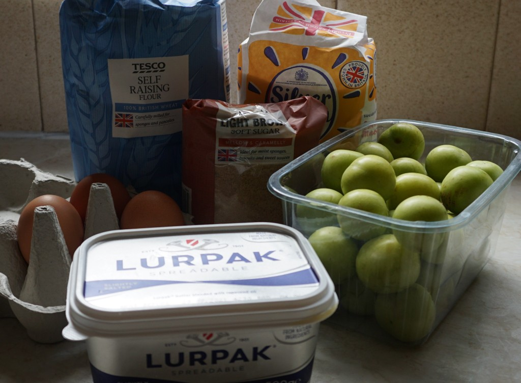 ingredients for plum pudding cake